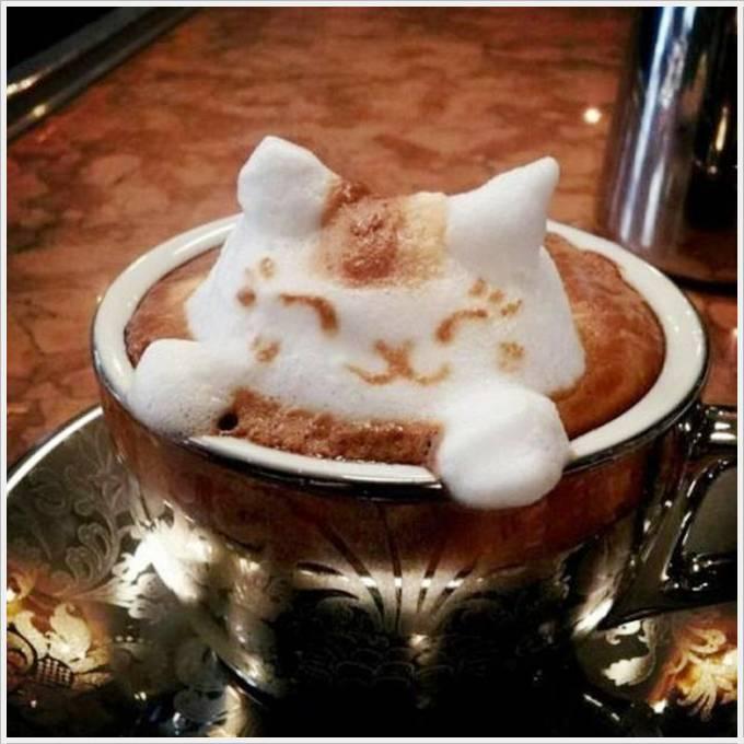 Biokaffee online kaufen – Kaffeegenuss mit gutem Gewissen