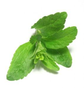 Stevia bei Diabetes, Übergewicht und Bluthochdruck