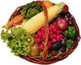 Enzyme und Rohkost
